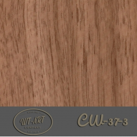 CW-37-3