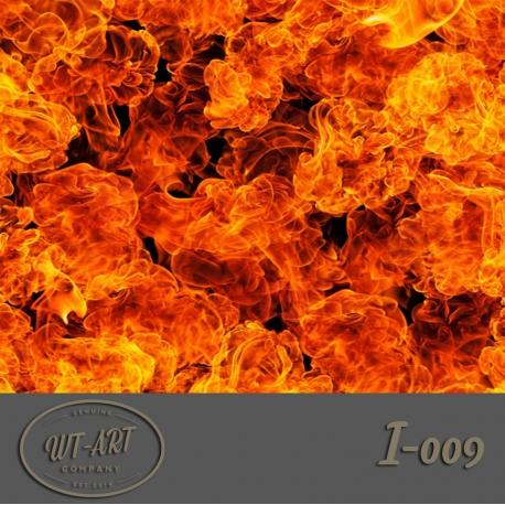 I-009