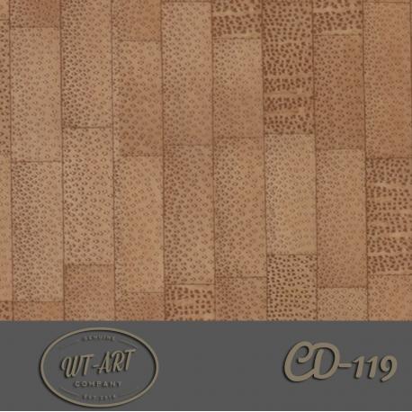 CD-119