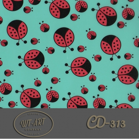CD-313