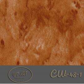 CW-48-1