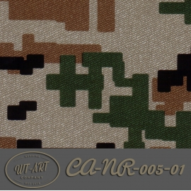 CA-NR-005-01