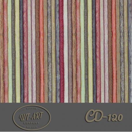 CD-120