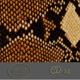 CD-38