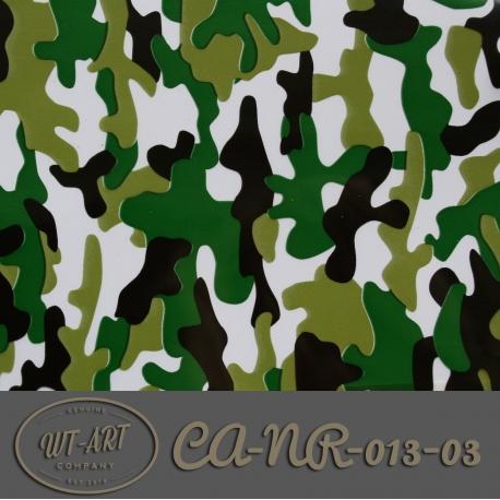 CA-NR-013-03