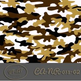 CA-NR-013-02