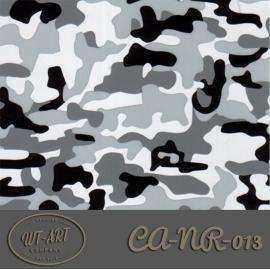 CA-NR-013