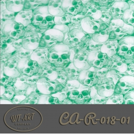 CA-R-018-01