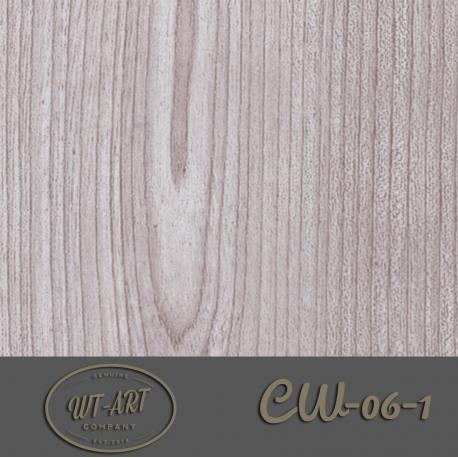 CW-06-1
