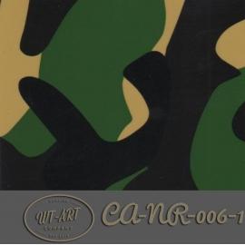 CA-NR-006-1