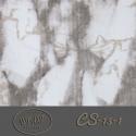 CS-10